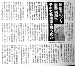 東電記事3.jpg