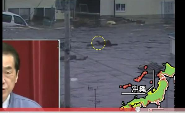 津波に流されてる人3.jpg