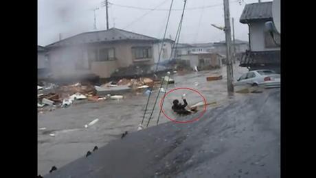 津波に流されるひと4.jpg